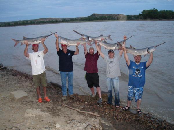 Paddlefishing Montana