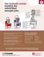 Hydraulic Pumps 11 20101