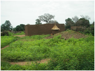 Gold Mine Dredging in West Africa